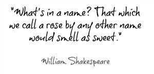 2015753903-william-shakespeare-quotes-romeo-and-juliet-6